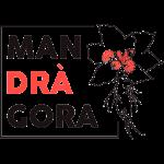 Mandragora Shop